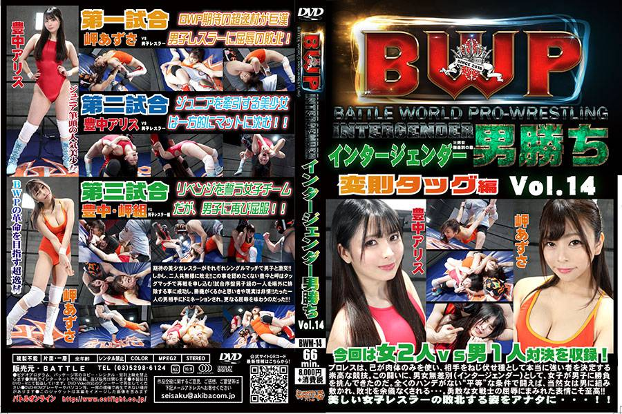 【HD】BWP インタージェンダー男勝ち Vol.14 変則タッグ編【プレミアム会員限定】 パッケージ