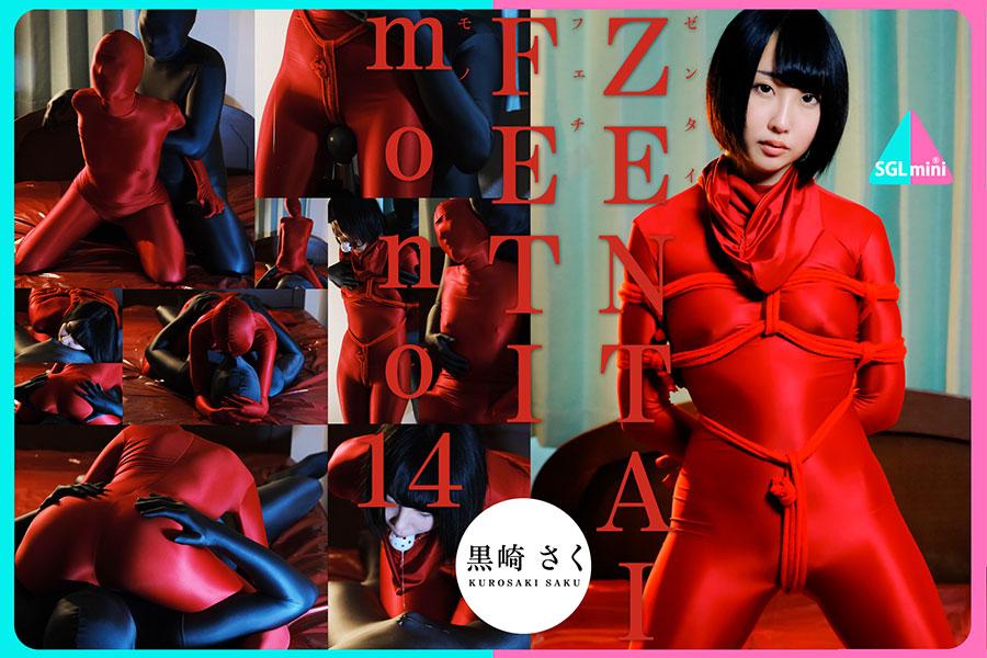 【HD】ZENTAI FETI mono 14 パッケージ