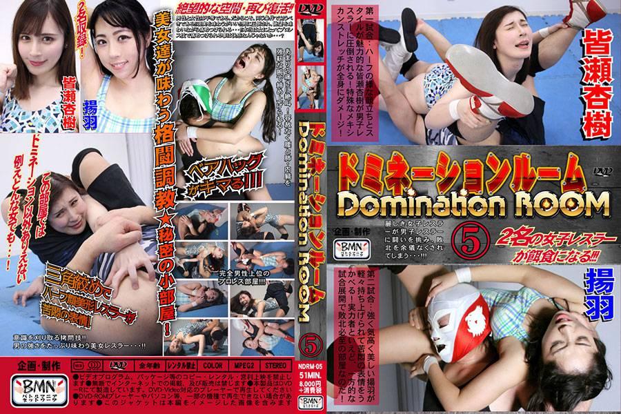 【HD】【投稿】ドミネーションルーム5 パッケージ