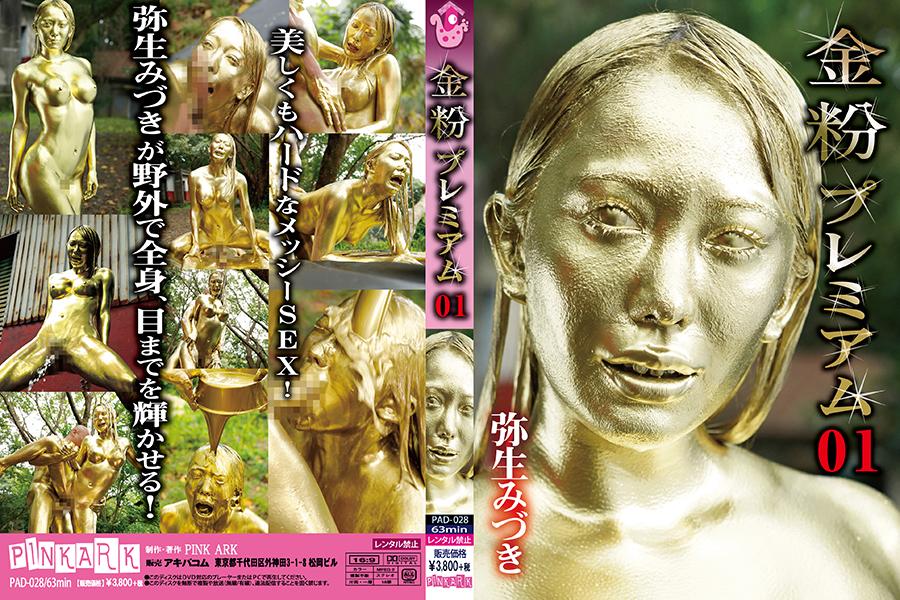 金粉プレミアム 01 パッケージ