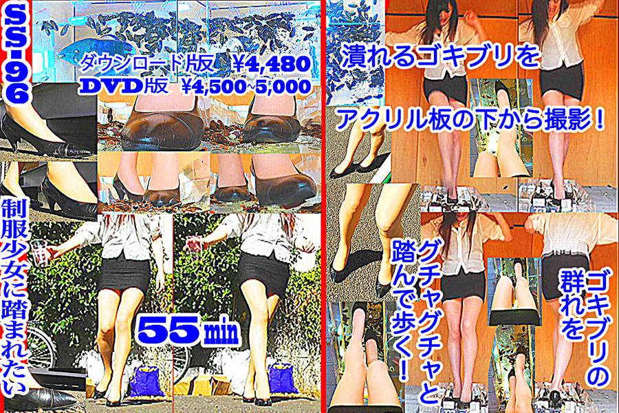 25cmパンプスの瑠伊様が巨大ゴキブリの大群をグチャグチャと踏み潰す!!-後編- パッケージ