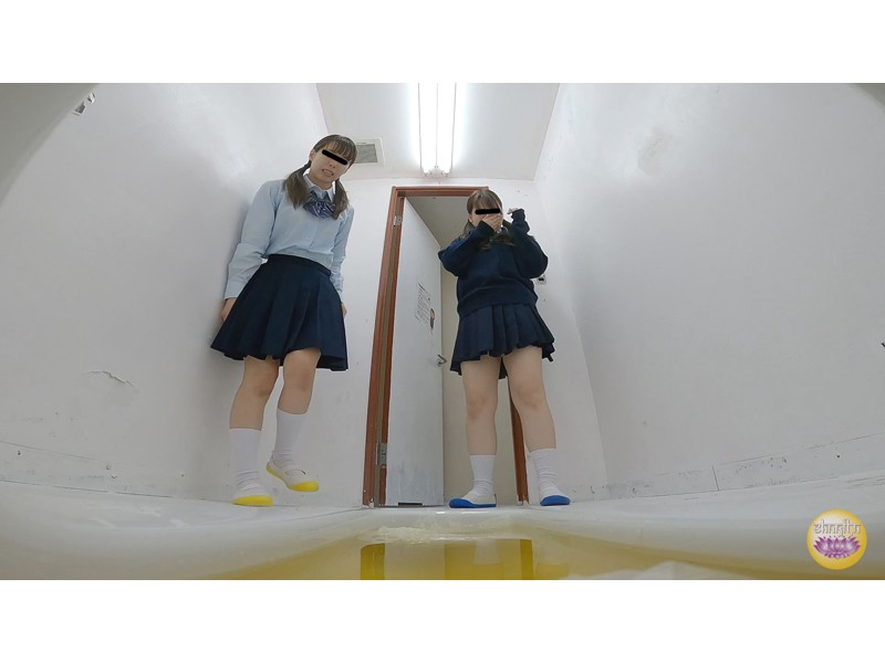 女子校トイレ 流れない激臭小便 サンプル画像