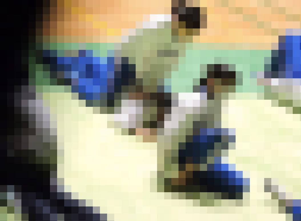 体操JK 体操競技選手権大会【動画】スポーツ編 3601~3603と3605~3607セット販売 サンプル画像